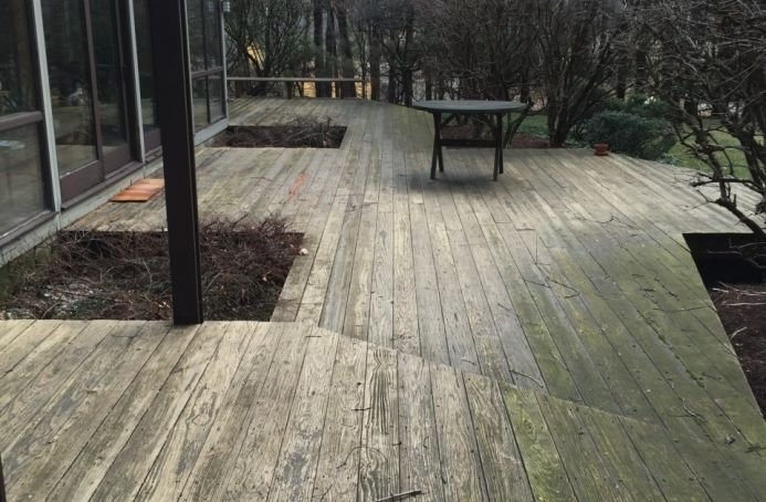 Pressure-Treated Pine with Solid Stain